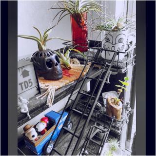 motomaki_zaouさんのお部屋写真 #1