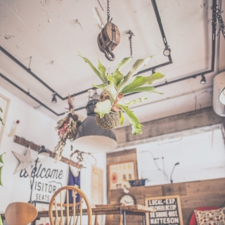 renovelifeさんのお部屋写真 #1