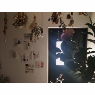 umaimesikuitaiさんのお部屋写真 #1