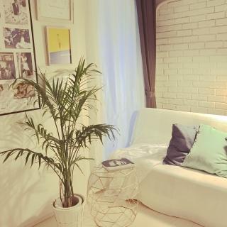 satominarikoさんのお部屋写真 #1