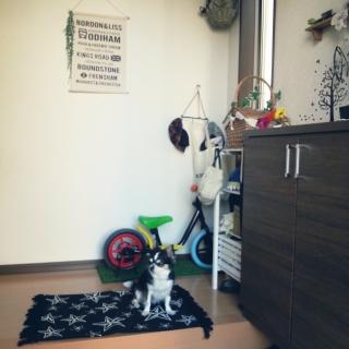 rponさんのお部屋写真 #1