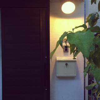 Marikoさんのお部屋写真 #1