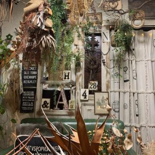 Shujiさんのお部屋写真 #1