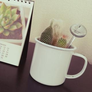 misukoさんのお部屋写真 #1