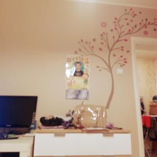 sstartdizajnさんのお部屋写真 #1
