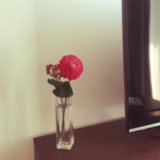 wakabaさんのお部屋写真 #1