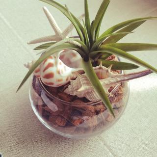 yukariさんのお部屋写真 #1
