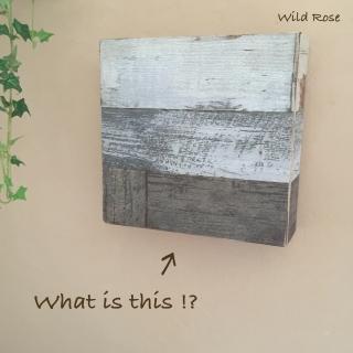 WildRoseさんのお部屋写真 #1
