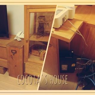 cocotaさんのお部屋写真 #1