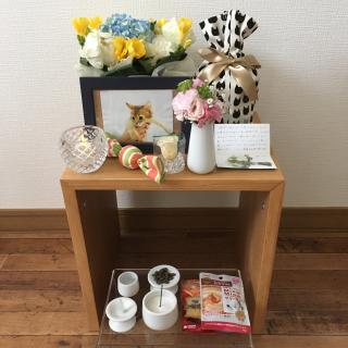 yukinoさんのお部屋写真 #1