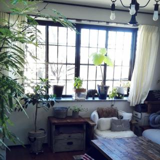 konoharuさんのお部屋写真 #1
