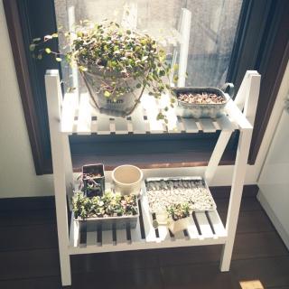 teruichiさんのお部屋写真 #1