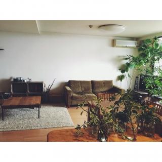 keikoさんのお部屋写真 #1