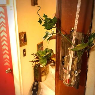 ma-ya-sunsunさんのお部屋写真 #1