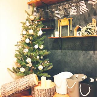 fb_mochaさんのお部屋写真 #1