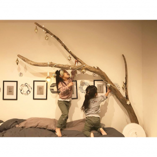 Risa___roomさんのお部屋写真 #1