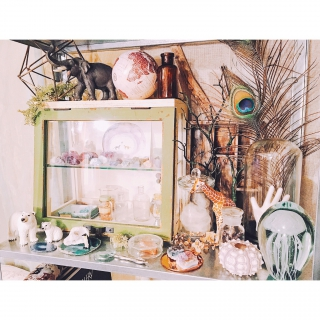 niufuglarさんのお部屋写真 #1
