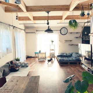 katsuwobushiさんのお部屋写真 #1