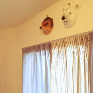 cocommさんのお部屋写真 #1