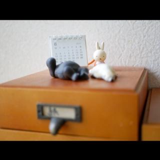 kiritorunoさんのお部屋写真 #1