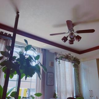 neigeさんのお部屋写真 #1