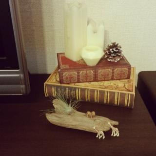 shimaさんのお部屋写真 #1