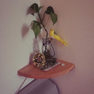 sawamamaさんのお部屋写真 #1
