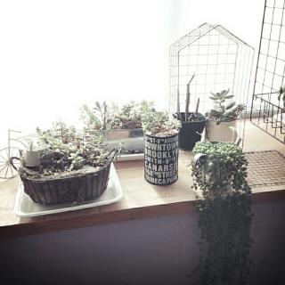 yunさんのお部屋写真 #1