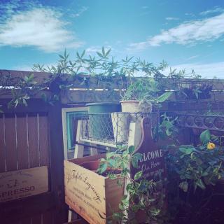 maimaiさんのお部屋写真 #1