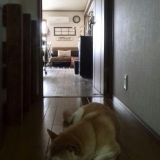 kei.hiroro2さんのお部屋写真 #1
