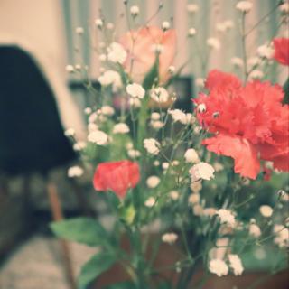 Nanakoさんのお部屋写真 #1