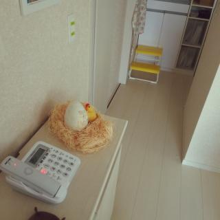 ekkoさんのお部屋写真 #1