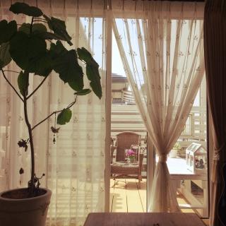 pittchさんのお部屋写真 #1
