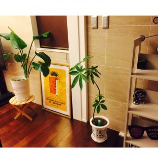 etsurio.ryuさんのお部屋写真 #1