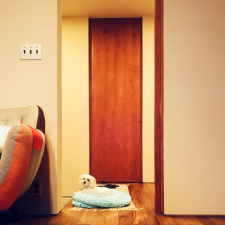 Komiyaさんのお部屋写真 #1