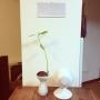 haijiさんのお部屋写真 #2