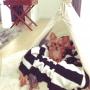 aki.-.diaryさんのお部屋写真 #5