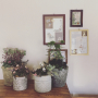 nanohanaさんのお部屋写真 #2