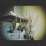 y3ta2omuさんのお部屋写真 #4