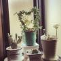 nobuさんのお部屋写真 #2