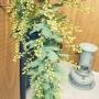 yuki-yukiさんのお部屋写真 #2