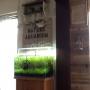 kfcfukuyamaさんのお部屋写真 #5