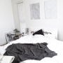 ruicoさんのお部屋写真 #2
