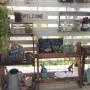 rupunさんのお部屋写真 #4