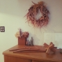 hacoさんのお部屋写真 #5