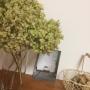 yukikoさんのお部屋写真 #2
