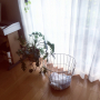 ffgreenさんのお部屋写真 #2