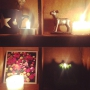 banさんのお部屋写真 #3
