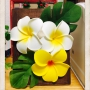 Tatsuさんのお部屋写真 #3