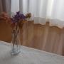 mi__koさんのお部屋写真 #4